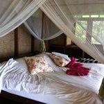 Le lit et sa moustiquaire
