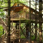 Wild Cherry Treehouse