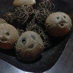 The coconuts had faces! :)