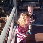 kids loved the Kangaroo visits