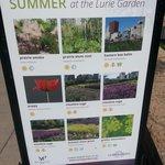 Posters detail seasonal blooms.