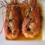 fresh water prawns - massive!