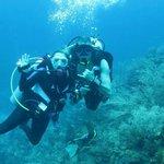diving is wonderful