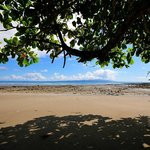 Pan Dulce beach in front of our property