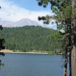 Mount Shasta from the shore of the Lake