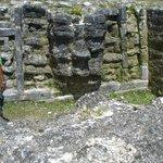 Altun Ha Ruins - see the face?