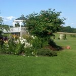 view from Casa Verde Cabin
