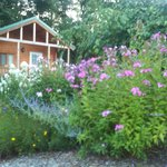View from Flower Garden looking back at Casa Verde Cabin