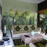 Bermimpi Orchid