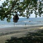 Swinging on the beach !!!