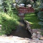 stream running through back yard
