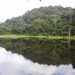 Lago del Hotel Maquenque