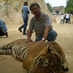 With the Big Cat...