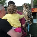 My husband and daughter stroking the owl
