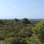 Grupotel Playa Club Foto