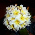 Frangipani bouquet for my wife's birthday