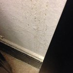 down the side of my bed...a good amount of dust and cobwebs #dive