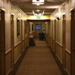 Dust bin in the corridor