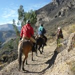 Ride in Peru -  Day Tours