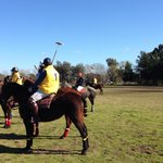 Great polo experience.