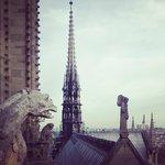 Vista do alto das torres de Notre Dame.