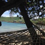 View from the hammock outside my room.
