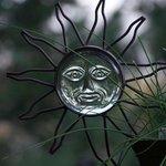 Sun Catcher & Chives-GL