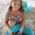 Future Marine Biologist