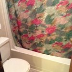Bathroom/shower 4 bed log cabin
