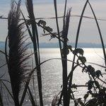 Belissima paisagem.. de frente para o mar