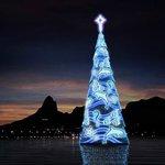 floating tree at Lagoa