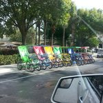 Pedal bikes for rent