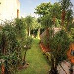 Vista al jardín desde la habiación