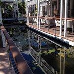 Reception/Restaurant/Bar Area