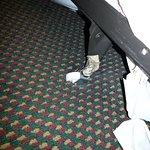 broken bed frame/wheels