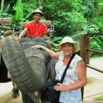 The elephant we rode on