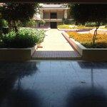 4th floor gardens