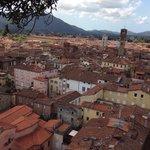 I tetti di Lucca