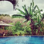 Villa Belindo照片