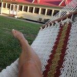 View from hammock at Wandering Phesant Inn