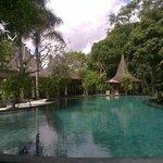 Spectacular pool!