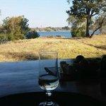 View from Veranda