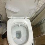 'Sanitzed' toilet.