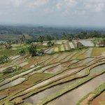 rijstterrassen beschermd door unesco prachtig