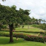 "View from ""ocean front villa"""