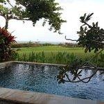 Pool...ocean front villa