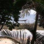 Vue du Bungalow, protéger par la végétation.