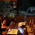 Dinner with Zebras and Celeste (African Bush Pig)