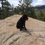 Taking a breather on nearby Mount Lemmon!