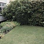 John's garden